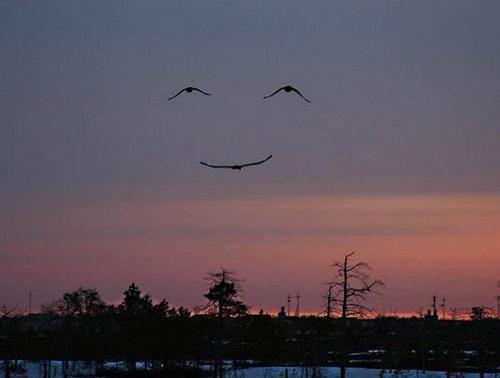 Небо улыбается