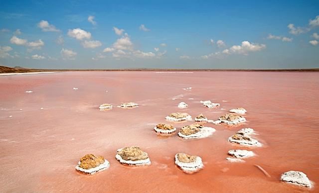 Рожеве озеро в Криму
