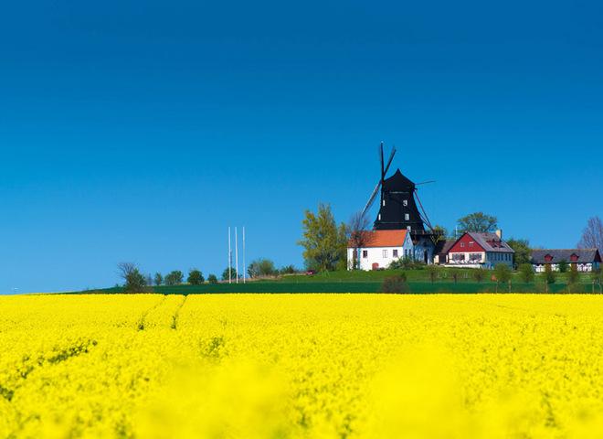 Семнадцать мгновений весны: пора вдохновения в разных странах