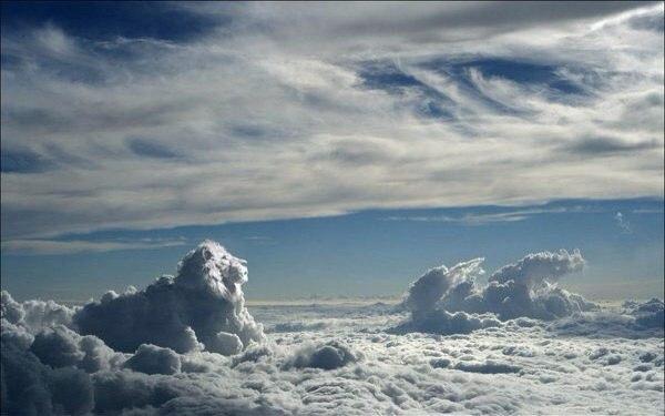 Обалденный небесный лев