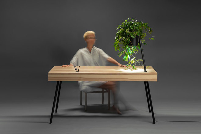 ORGANiC collection by RYNTOVT DESIGN and RDWOOD