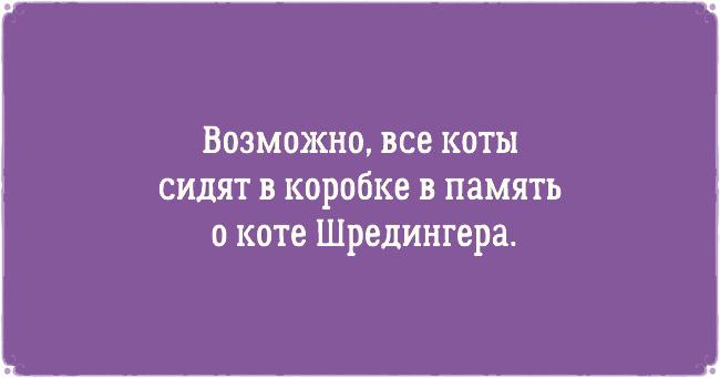 bf7a39da91f266a8118765d1c16fb0ed__3.jpg