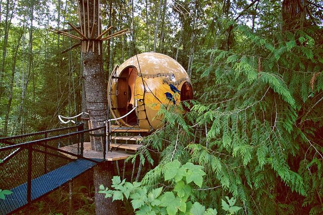 Провести ночь в гнезде: необычный отель на дереве