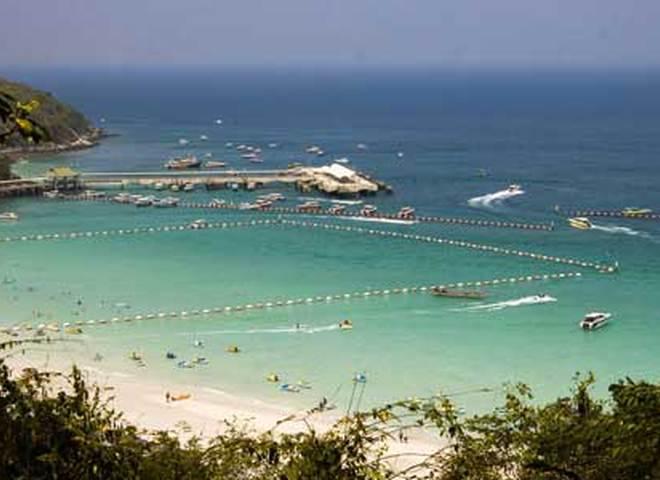 В Таиланде из‑за нашествия ядовитых медуз закрывают пляжи