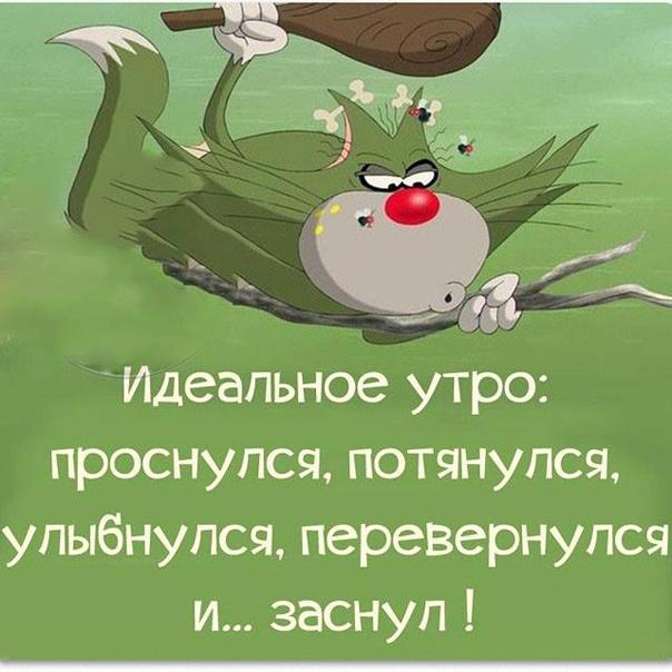 Пожелания с добрым утром прикольные картинки с надписями смешные до слез, открыток интернета