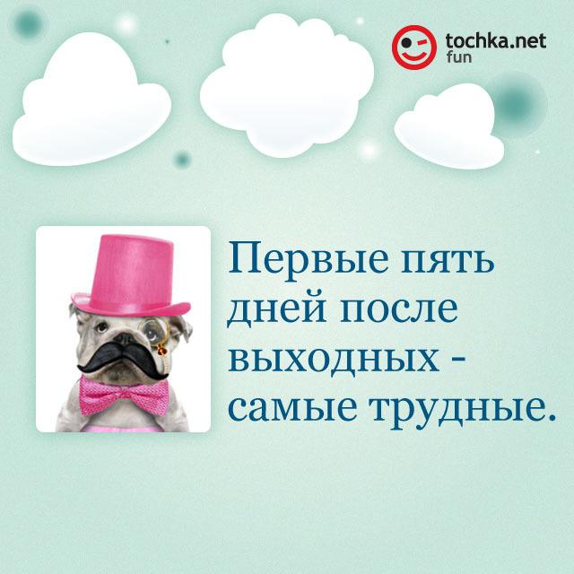Собака-философяка про дни недели