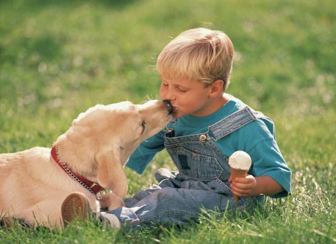У лондонських собак є своє морозиво!