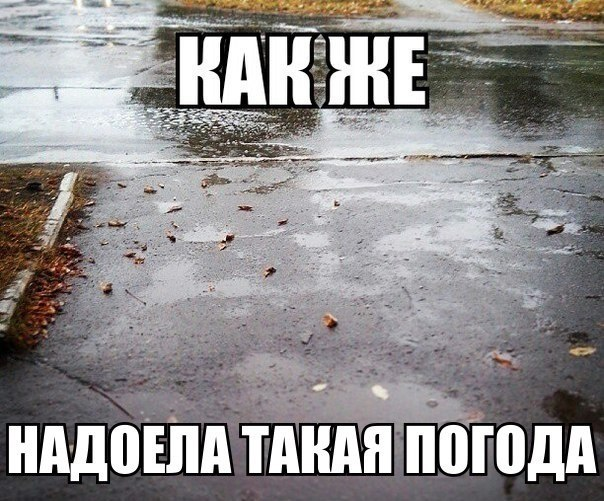 Дождь, ты уже достал!
