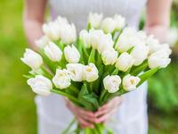 Нежные тюльпаны на День Рождение