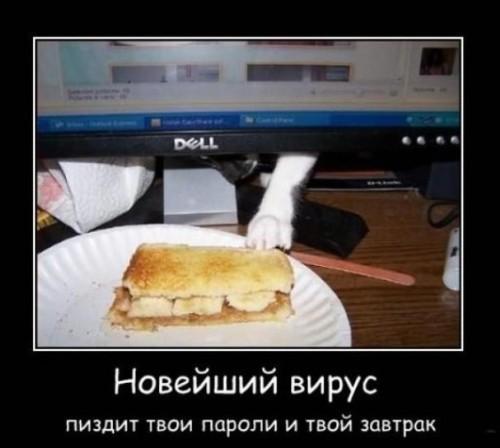 ржака))))))))