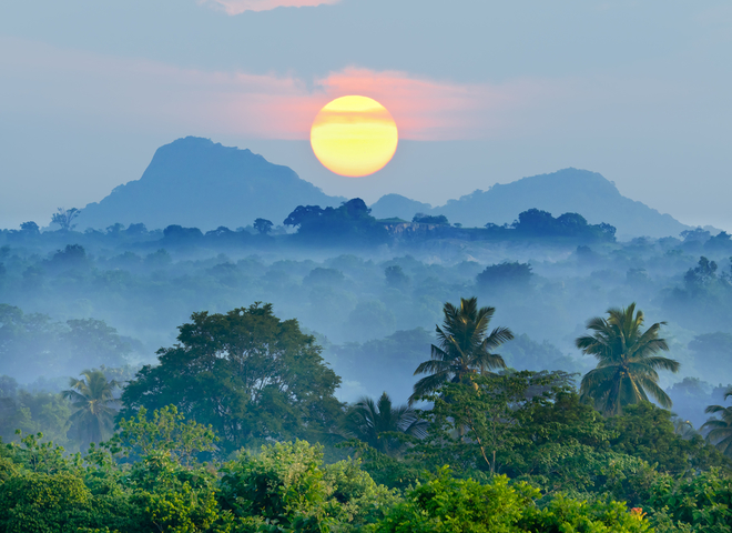 Топ-10 интересных фактов о Шри-Ланкe