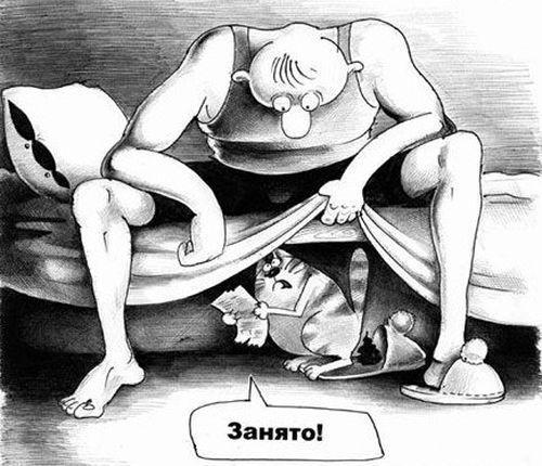 Веселые карикатуры про котов