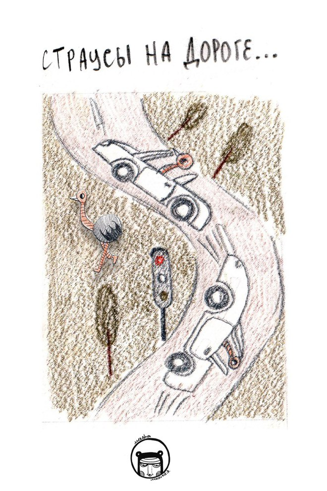 Кругом одни страусы. Комиксы от Maria Medvedik