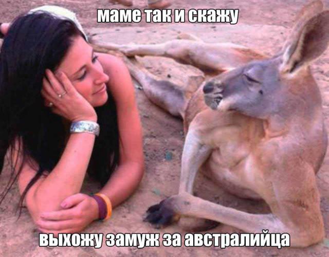 Милая фотка с кенгуру