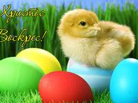 Милі листівки на Великдень