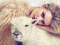 Красивая девушка с овечкой