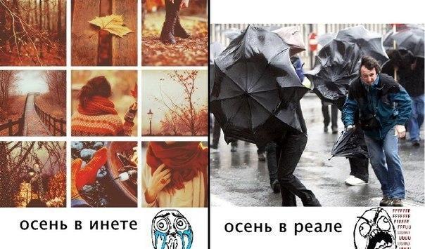 Картинка про осень