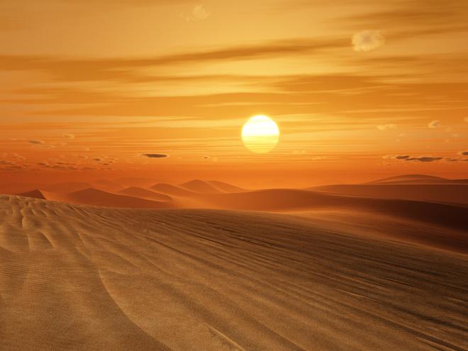 День преподобного Макарія Великого, Єгипетського