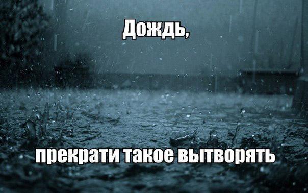 Картинки приколы про дождливую погоду, выпускной класс