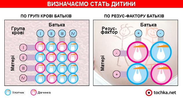 Інфографіка: визначаємо стать дитини