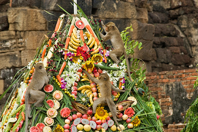 Найдивніші і незвичайні фестивалі світу