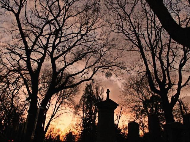 найбільш відомі кладовища