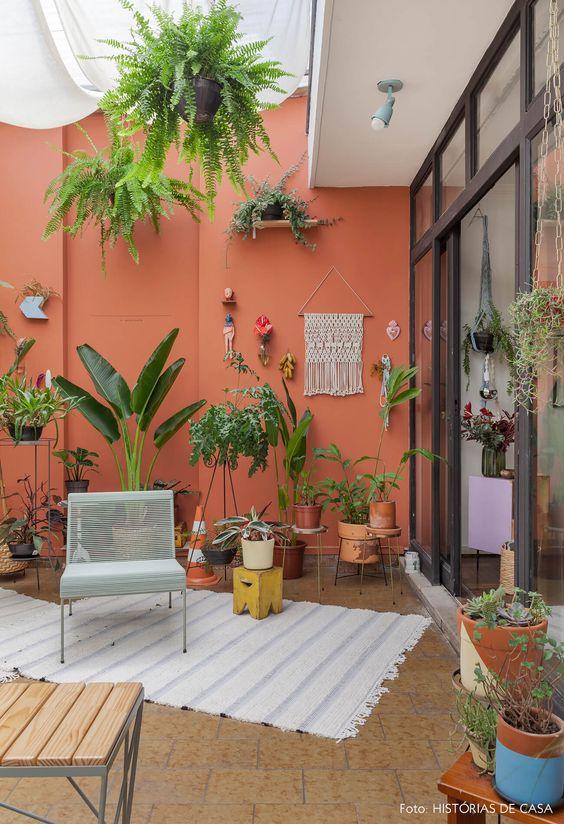 Терраса на даче: растения