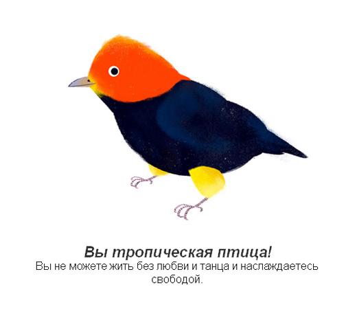 Контакты  ЛТСМЕД