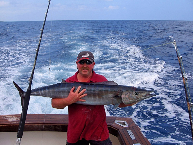 Трофейна рибалка: Острів Північний, Нова Зеландія