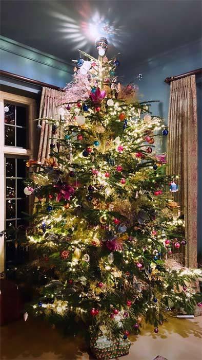 Новогодняя елка Робби и Айды Уильямс
