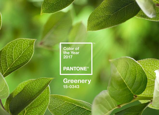 Главный цвет 2017 года по версии Pantone