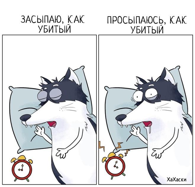 Милые комиксы про сон от Хахаски
