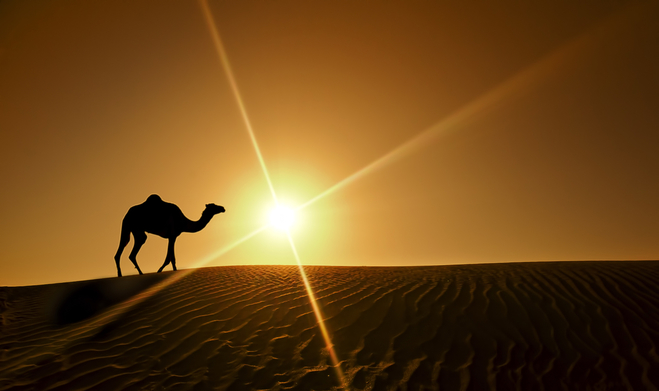 пустеля біля міста Шарджа