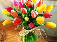 Красивые цветы на День Рождения