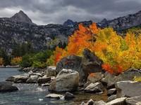 Осень раскрашивает серые будни