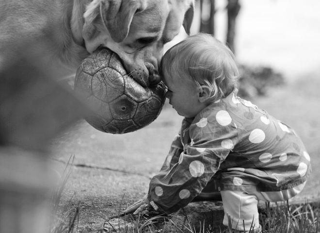 Лучшие друзья: дети и их четырехлапые питомцы
