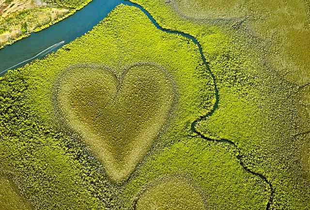 Самые романтические места планеты в виде сердца: Сердце из мангровых деревьев, Новая Каледония