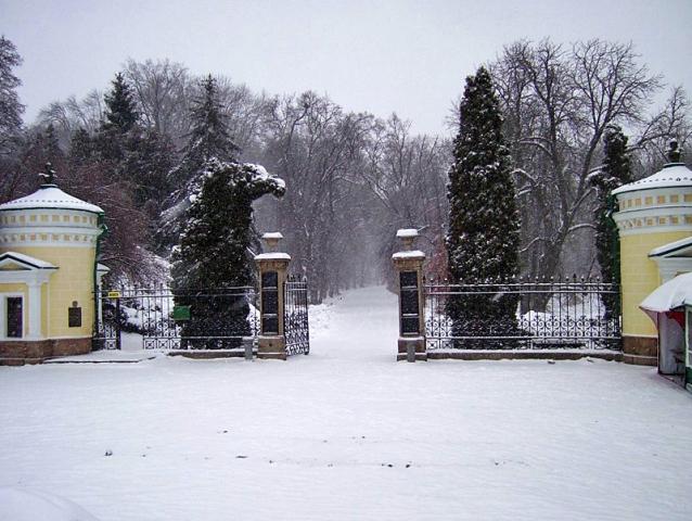 Софіївка зимова