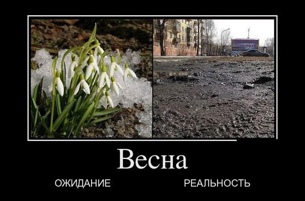 ТОП лучших демотиваторов про весну