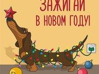 Зажигай на Новый год собаки
