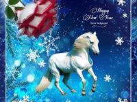 С Новым годом лошади 2014