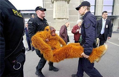 Веселая работа- полицейский