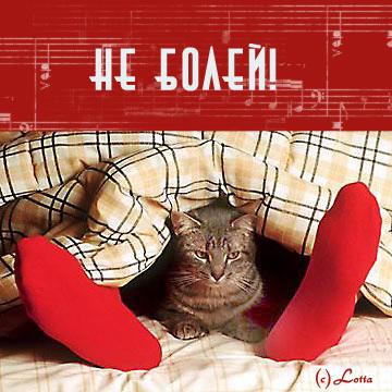 Не болей! Не беси котэ:)