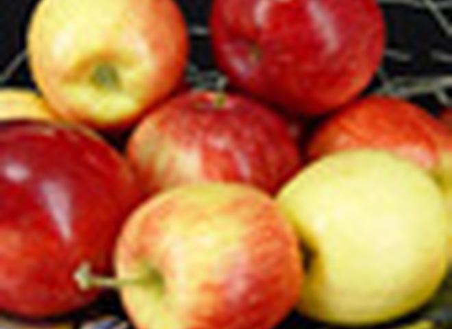 Яблоки для легкого дыхания