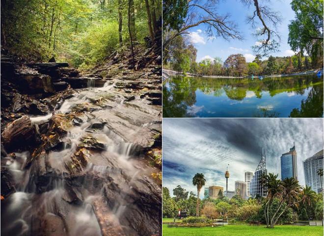 Любуемся осенними пейзажами: 3 лучших городских парка
