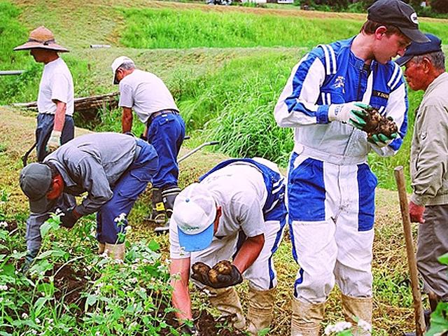 Волонтерські програми: Wwoof