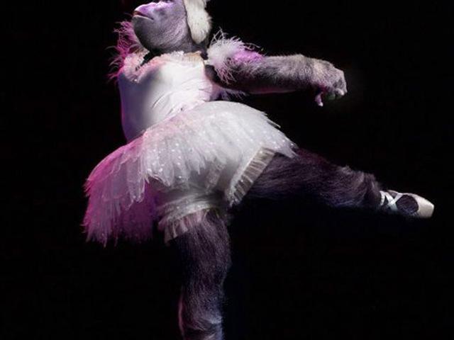Картинка танцор прикольная