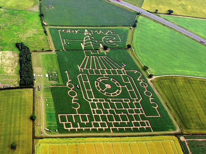 Самые запутанные лабиринты: York Maze, Йорк, Англия