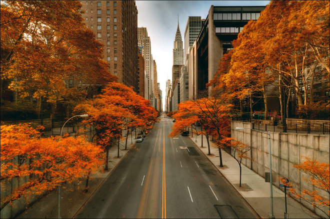 Куда поехать в октябре: осень в Нью-Йорке
