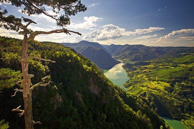 Сербія